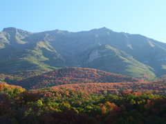 Rock Climbing Photo: Looking up Timp. from just above Battle Creek Cany...