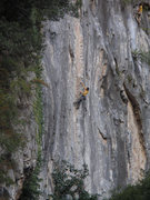 Rock Climbing Photo: Unknown Chex climber on Coco Loco. Shot from down ...