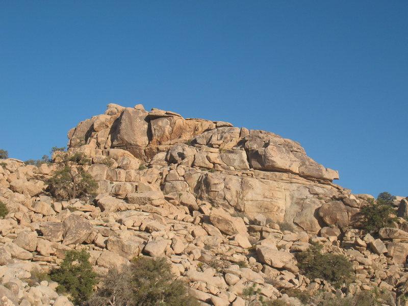 Rock Climbing Photo: Creature Comforts Wall, Joshua Tree NP
