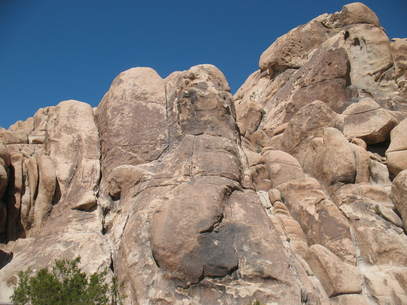 Feudal Wall (Far Left Side), Joshua Tree NP. <br>