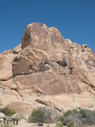 Rock Climbing Photo: Willit Pillar, Joshua Tree NP.