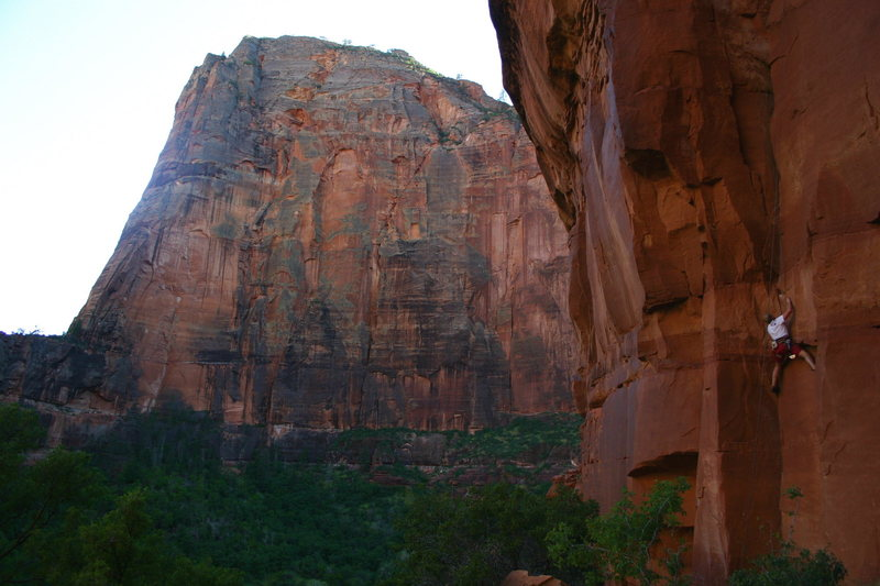 Rock Climbing Photo: Zion - Fathedral