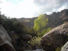 Rock Climbing Photo: Molino
