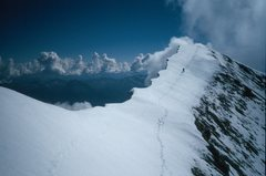 Rock Climbing Photo: On the summit ridge of Edith Cavell.