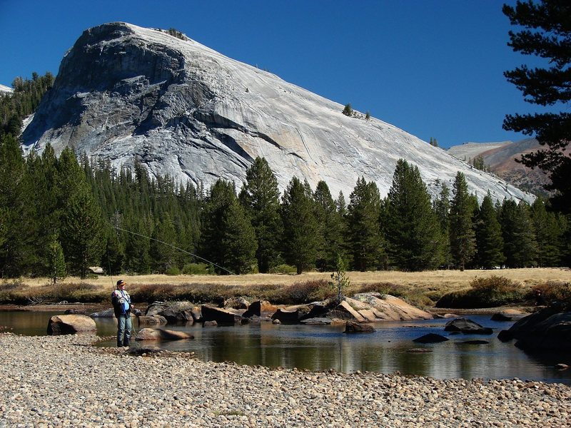 Rock Climbing Photo: Flyfishing, Lembert dome in the background.  Septe...