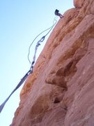 Rock Climbing Photo: North side rap on a single 60m...comes up a bit sh...