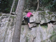 Rock Climbing Photo: crack jack