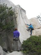 Rock Climbing Photo: TRing the Y Crack