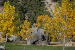 Rock Climbing Photo: Tiger stripe boulder in BV Boulder Garden.
