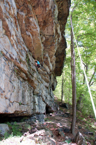 Rock Climbing Photo: Laura Hahn seconding Humpty Dumpty  5.10d at Schoo...