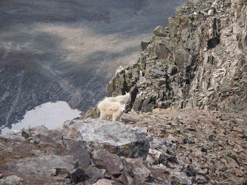Rock Climbing Photo: climbing fool