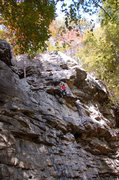 Rock Climbing Photo: Laura Hahn mid fall on Good Day to Die 5.11a