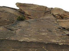 Rock Climbing Photo: Looking up at Amber p2.