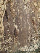 Rock Climbing Photo: Black Velvet Wall