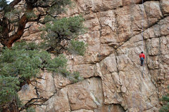 Rock Climbing Photo: rapping locals only