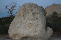 Rock Climbing Photo:  Rock Guardian of Grapevine Canyon.