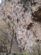 Rock Climbing Photo: Warming up on Primer.