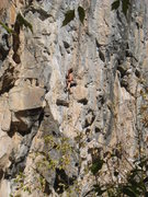 Rock Climbing Photo: Enjoying the long intricate headwall of Movement o...