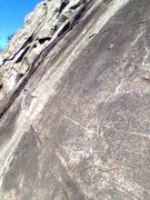 Rock Climbing Photo: 3 Cam Party