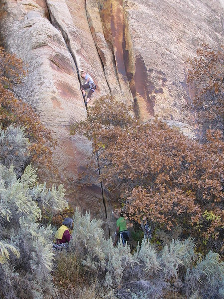 Emily Kuhr on the Split Pillar, 5.9?  Taken from across the road, only 0.9 miles from Newspaper Rock.<br>