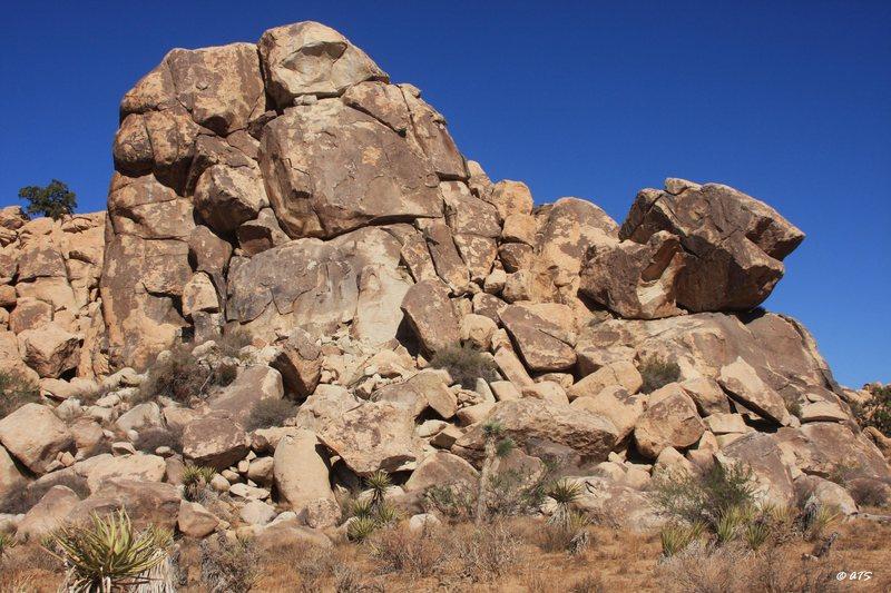 Rock Climbing Photo: El Dorado