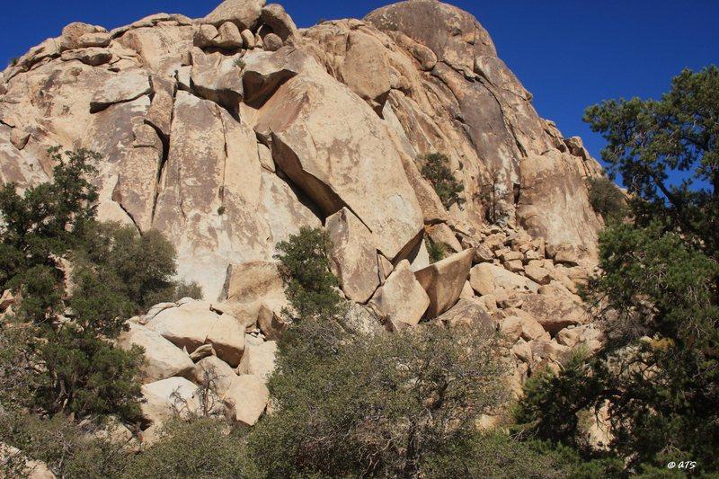 Rock Climbing Photo: Pernicious Dome
