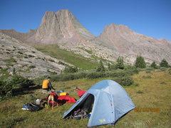 Rock Climbing Photo: Vestal Peak - Wham Ridge - morning light