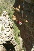 Rock Climbing Photo: Vince crankin at Butterfly. Jimbo Photo.