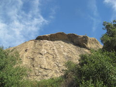 Rock Climbing Photo: Mike 1/2 way up.