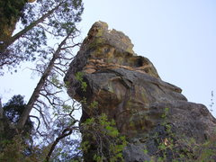 Rock Climbing Photo: Trundle Pinnacle