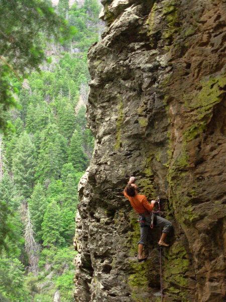 Rock Climbing Photo: Pocket Protector 5.10c