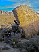 Rock Climbing Photo: Joshua Tree: White Rasta