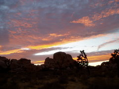 Rock Climbing Photo: Classic Desert Sunset in Joshua Tree