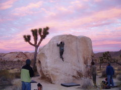 Rock Climbing Photo: Pinhead Boulder in Joshua Tree with the usual susp...