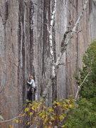 Rock Climbing Photo: Converse on Dacker Cracker