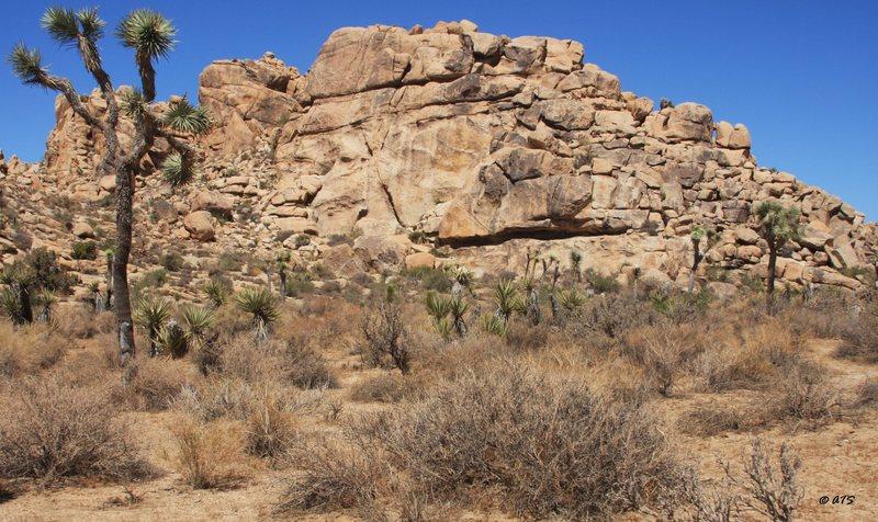 Rock Climbing Photo: Brownie Girl Dome