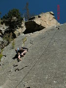 Rock Climbing Photo: finger cracks barefoot...best idea ever