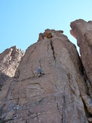Rock Climbing Photo: EFR leading Microskunks with Cholla Coats
