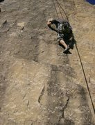 Rock Climbing Photo: Crimping at the top of the face.