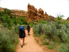 Rock Climbing Photo: The walk back.