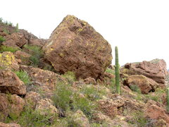 Rock Climbing Photo: Another of the nice boulders at Panther Peak.