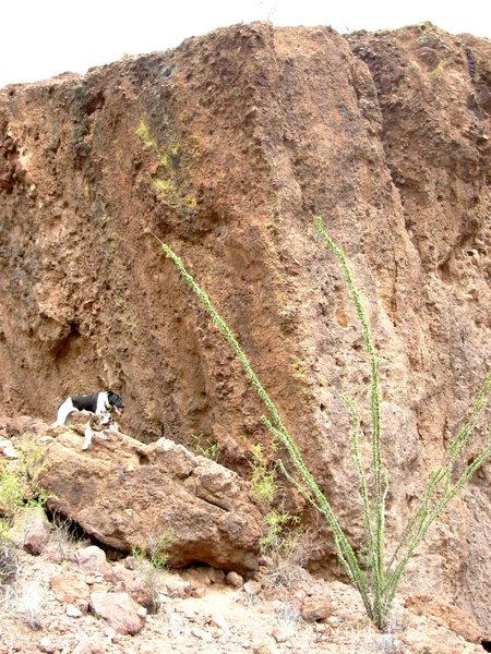 The Split Boulder.