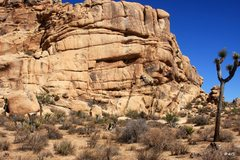 Rock Climbing Photo: The Seitch