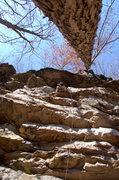 Rock Climbing Photo: Dana working Natural Mystic 5.12a on an amazing fa...