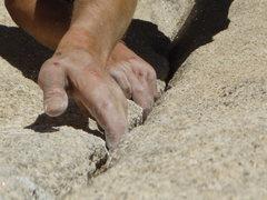 Rock Climbing Photo: Pinhead. Joshua Tree