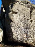 Rock Climbing Photo: The Maxima Boulder