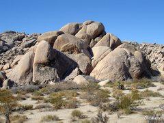 Rock Climbing Photo: Zippy Rock
