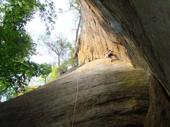 Rock Climbing Photo: Headstone Surfer. 	 Red Hot Chilli Pepper is the r...
