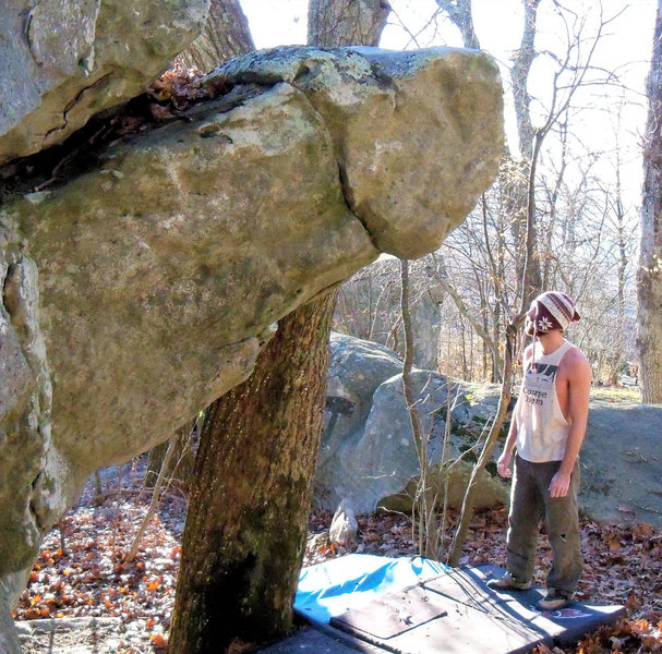 """Rock Climbing Photo: Steve looking at """"enzyte"""""""