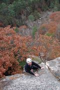 Rock Climbing Photo: Dave just pulled the last bulge on pine tree... no...